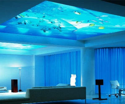 The killing modern top of aquariums The killing modern top of aquariums The killing modern top of aquariums Modern home decor aquarium 405x335
