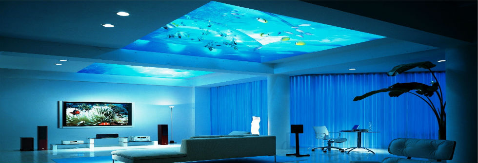The killing modern top of aquariums